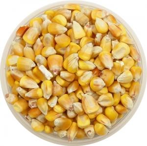 Кукуруза, 1 кг