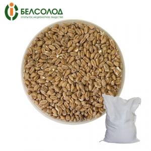 Солод «Пшеничный» Белсолод, 9 кг