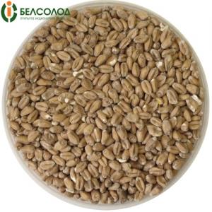 Солод «Пшеничный» Белсолод, 1 кг