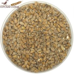 Солод «Пшеничный» Kursk, 1 кг