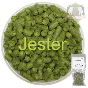 Хмель Дчестер (Jester) 100 г