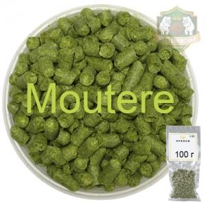 Хмель Моутере (Moutere) 100 г