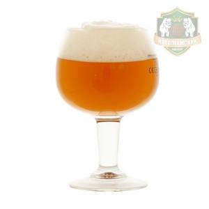 Набор НП Blond Ale (зерновое)