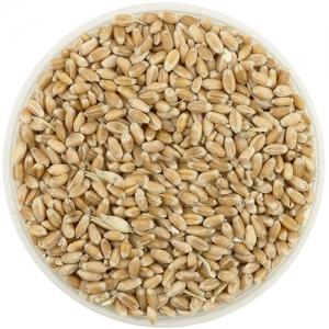 Пшеница, 1 кг